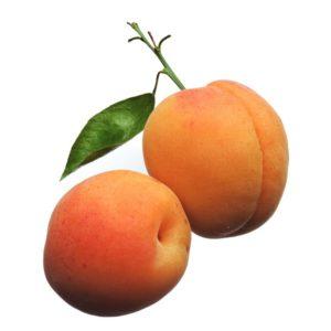 abricot-2